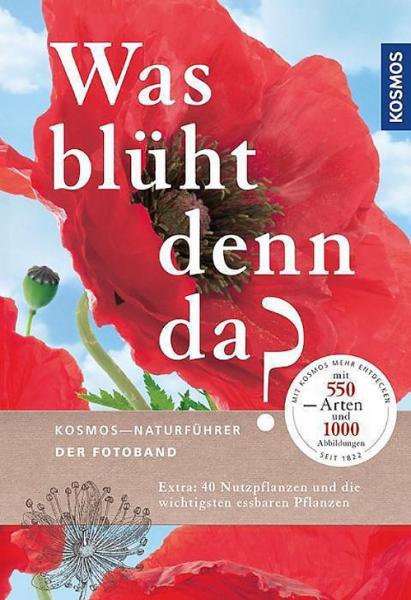 Was_blueht_den_da.png